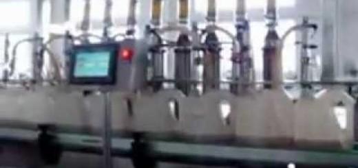 Oil filling machine for Lube, Edible , Motor oil ,Engine Oil , Essential Oil Filling machine