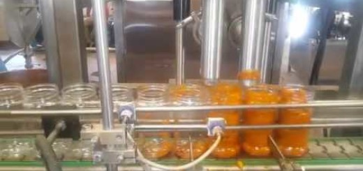Two Head Pickle filling line, Double head Pickle filler