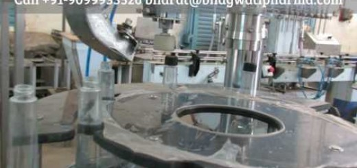 Screw Capping Machine for long neck bottle, Bottle Screw Capping Machine