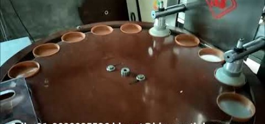 Cap Wadding Machine, Wad Fixing Machine